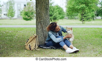 Kind African-American girl caressing beautiful shiba inu dog...