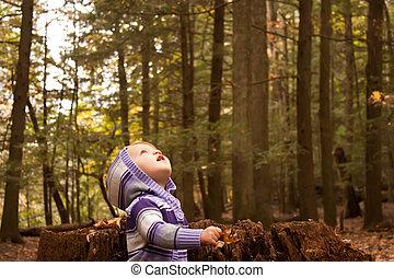 kind, hout, op, blik