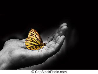 Kindness  - Butterfly on a man\'s hand.