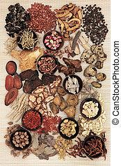 kinesisk ört medicin