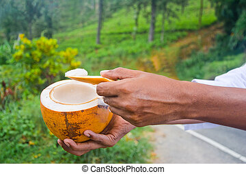 King Coconut, King Coconut Is A Well-Known Source Of ...