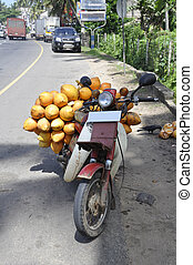 King coconut transport - Transporting this produce to market...