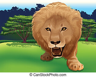 King of the Jungle - Illustration of a Lion