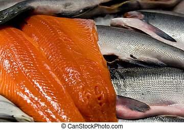 King salmon - Wild caught fish at Seattle\\\'s Pike place...
