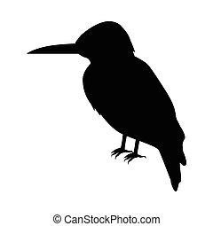 Kingfisher Flat Design Vector Illustration