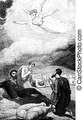 kinyilatkoztatás, pásztor