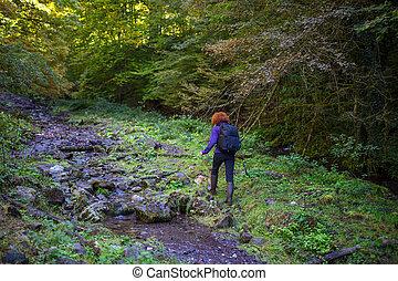 kiránduló, nő, képben látható, egy, nyom, által, a, folyó
