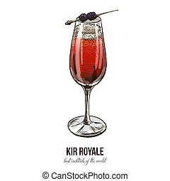 Kir Royale cocktail, vector illustration, hand drawn sketch, colored