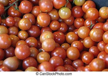 kirsch tomaten