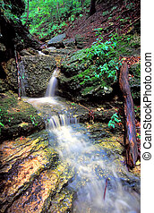 Kishwaukee Gorge Waterfall Illinois