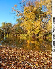 kishwaukee, río, otoño, paisaje