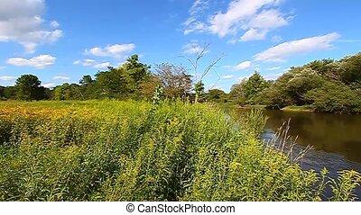 Kishwaukee River and Chirping Birds - Birds chirp along the...