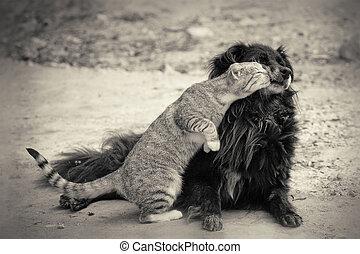 cat kissing dog. sepia