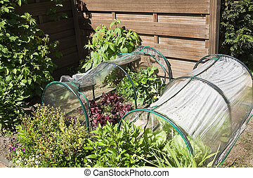 Kitchen garden for children with vegetables - Fruit- and...