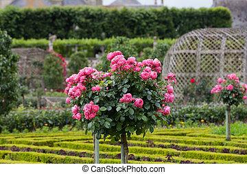 Kitchen garden in Chateau de Villandry. Loire Valley, France...
