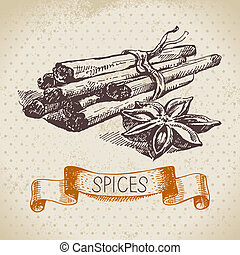 Kitchen herbs and spices. Vintage background with hand drawn sketch cinnamon