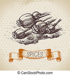 Kitchen herbs and spices. Vintage background with hand drawn sketch poppy seeds