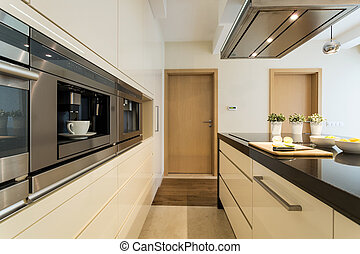 Kitchen in a modern apartment