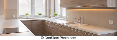 Kitchen interior with wooden cupboards