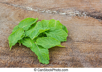 Kitchen mint or marsh mint. - Kitchen mint or marsh mint on...