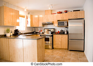 modern day kitchen with stainless steel appliances