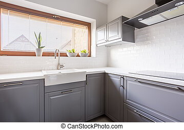 Kitchen with canopy