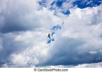 Kite cloud in the sky