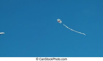 Kite is Flying in the Sky