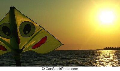 Kite Toy In Sunset