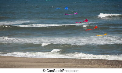 Kites and Pacific Ocean - Kites blowing in the wind with the...