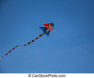 Kites flying in the sky