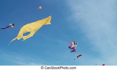 Kites in shape of cramp-fish flying in sky among dozens of...