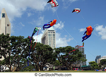Kites in the park