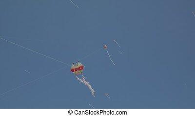 Kites kite in the sky, 4k.