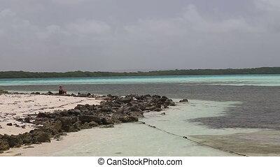 Kitesurf Caribbean Sea