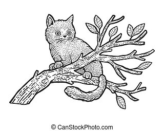 kitten cat sits on a tree sketch engraving vector illustration. T-shirt apparel print design. Scratch board imitation. Black and white hand drawn image.