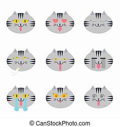 Kitten faces emotional