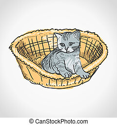 Kitten in Basket - Small furry kitten inside brown basket ...