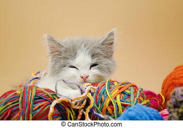 Kitten sleeping with colorful wool yarn balls