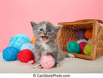 kitten with balls of yarn spilling from basket