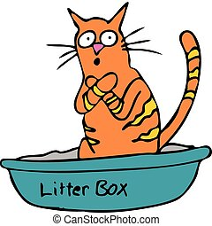Kitty Litterbox - An image of a cat embarassed using the...