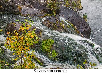 Kivach waterfall in Karelia, Russia. Nature landscape of the...