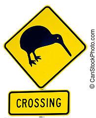 kiwi, attenzione, segno, nz, incrocio, bianco, strada