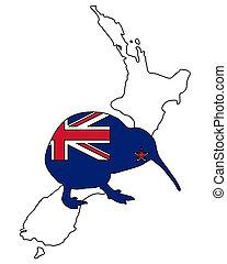 kiwi, di, nuova zelanda
