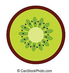 kiwi flat illustration on white