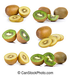 kiwi fruit on a white background