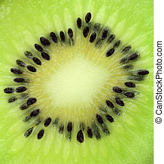 Kiwi fruit slice texture