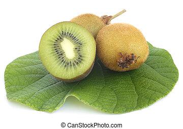 kiwi, fruta fresca, com, folha verde