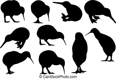 Kiwi Silhouette vector illustration