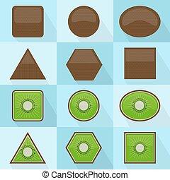 Kiwifruit geometric shape